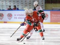 IV Кубок РОСПРОФЖЕЛ по хоккею с шайбой. 1/2 финала