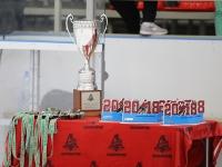 VIII Кубок по хоккею памяти В.В. Сёмина. Финал
